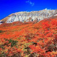 紅葉の伯耆大山と蒜山/上蒜山登頂