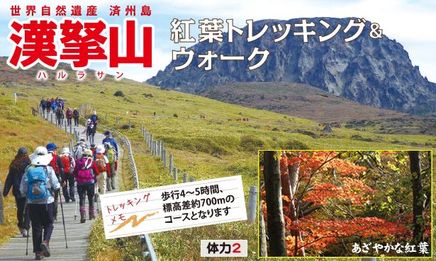 世界自然遺産 済州島 漢拏山(ハルラ山) 紅葉トレッキング&ウォーク