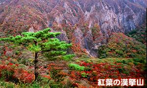 紅葉の漢拏山