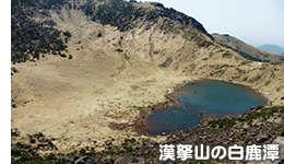 漢拏山の白鹿潭