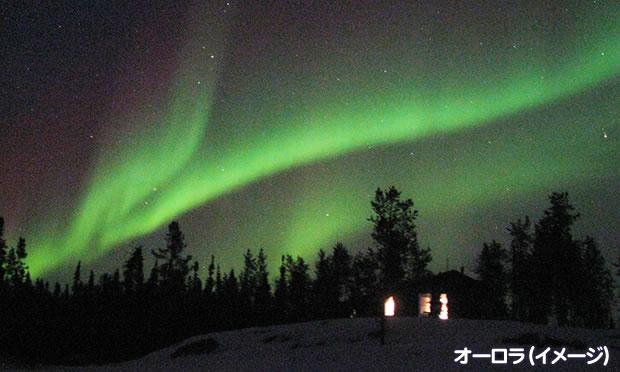 夏のアラスカハイキングとデナリ国立公園&氷河クルーズ