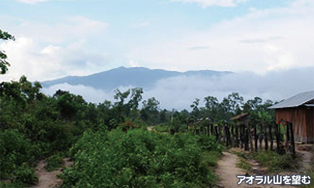 カンボジア最高峰 アオラル山登...
