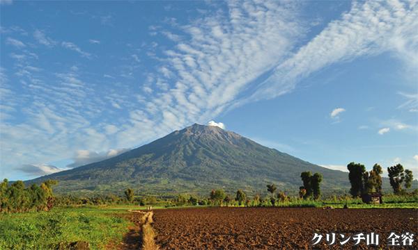 インドネシア スマトラ島 最高峰 クリンチ山登頂 7日間