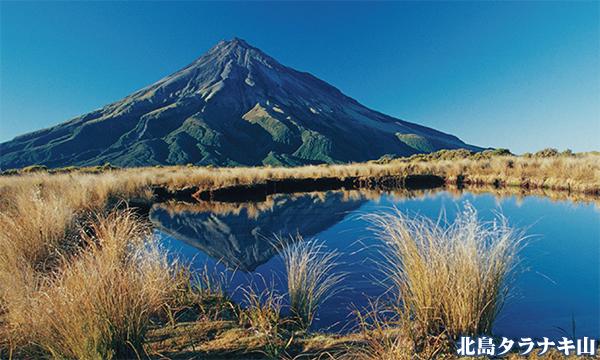 ニュージーランド北島を満喫!ルアペフ山&タラナキ山2座登頂とトンガリロクロッシング