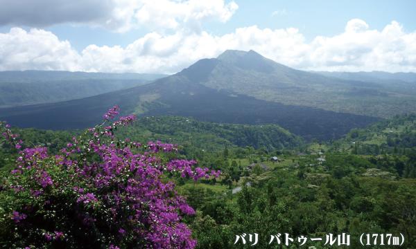バリ島 バトゥ-ル山(1717m)登頂とボロブドゥール遺跡