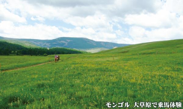 モンゴル ボグド山脈 ツェツェーグン山(2268m)登頂と大草原乗馬体験