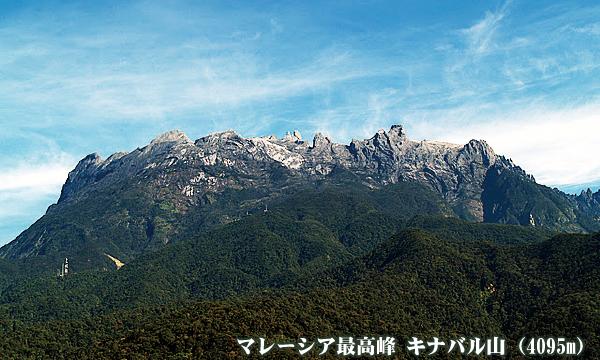 ポーター同行 マレーシア最高峰 キナバル山(4095m)登頂