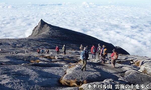 キナバル山登頂とヴィアフェラータ バリエーションルートから登る