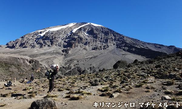 マチャメルートで登る キリマンジャロ(5895m)登頂とマニヤラ湖国立公園