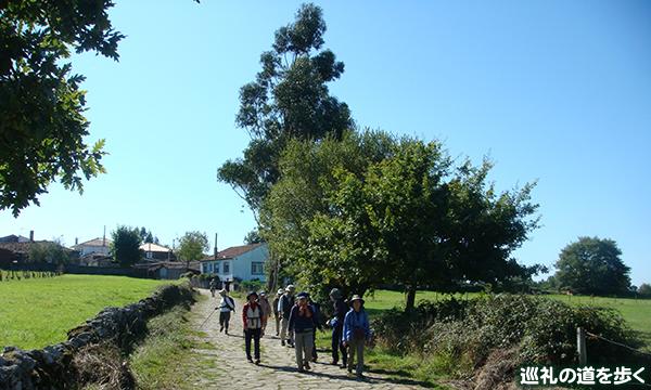 スペイン サンティアゴ巡礼の道・ラスト110kmを歩く