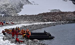 南極探検旅行 クーバービル島